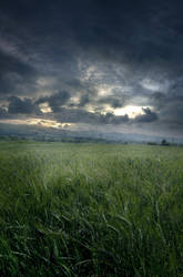 UNRESTRICTED - Stormy Field Premade by frozenstocks