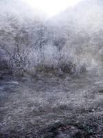 UNRESTRICTED - Frosty Land 2 by frozenstocks