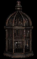 UNRESTRICTED - Rusty Birdcage Render by frozenstocks