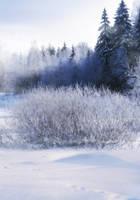 UNRESTRICTED - Winter Blues Premade II by frozenstocks