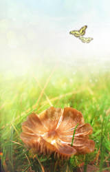 UNRESTRICTED - Fairy Shroom BG by frozenstocks