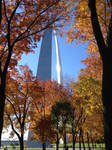 St. Louis Arch in the Fall by DashBoardBoy