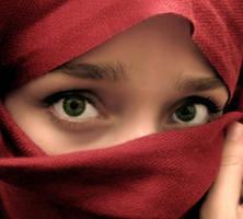 veiled emotion by fightingnaturalist