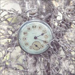 Frozen Time... by Consuelo-Parra