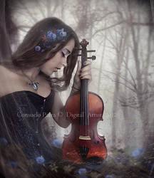 Harmony of Roses by Aeternum-designs