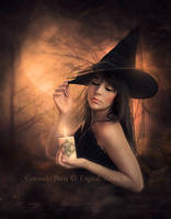The Witch by Consuelo-Parra