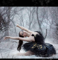 Snow in the soul by Consuelo-Parra