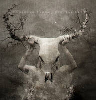 Death skull by Consuelo-Parra