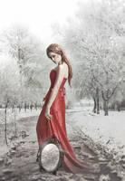 Winter heart by Aeternum-designs