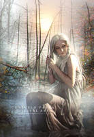 Dream swamp by Aeternum-designs
