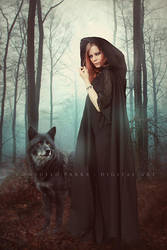 Wolf spirit by Aeternum-designs
