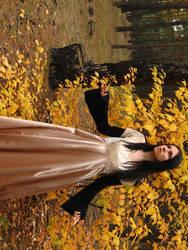 Gold lady VIII by Black-Ofelia-Stock