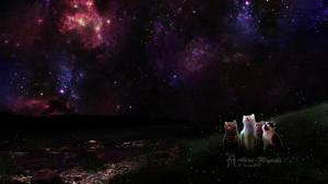 Purr-fect Night by Akira-Miyashi