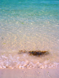 Hues washed ashore by dreamsinhidefinition