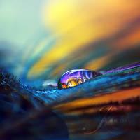 Rainbow Warrior by Healzo