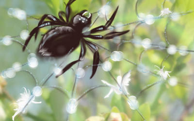 Pixies in Spider Web II by cedarlili