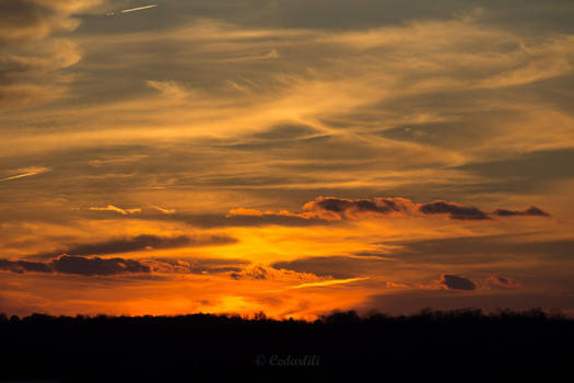 November Sunset by cedarlili