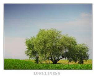 Happiness and Loneliness by XtraVagAnT