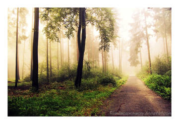 Autumn feelings no.5 by naturetimescape