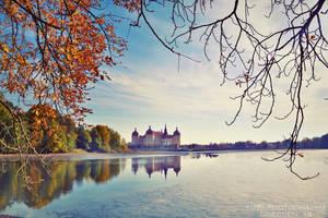 golden autumn by naturetimescape