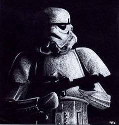 White on Black Stormtrooper by otakuhobbit