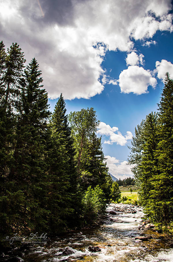 Mountain Stream by JessicaDobbs