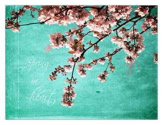 Spring in HeaRt by dincha