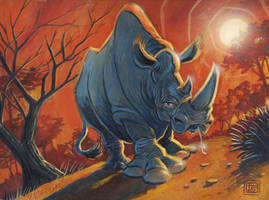 Rhino Painting by timshinn73