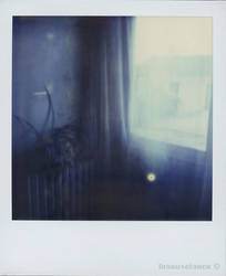 My first pola by Insousciance