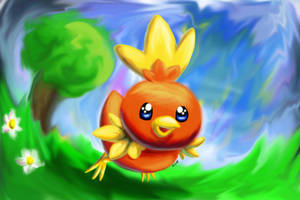 Torchic :D by Togechu