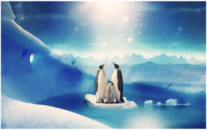 Penguins by Piccadillyxo