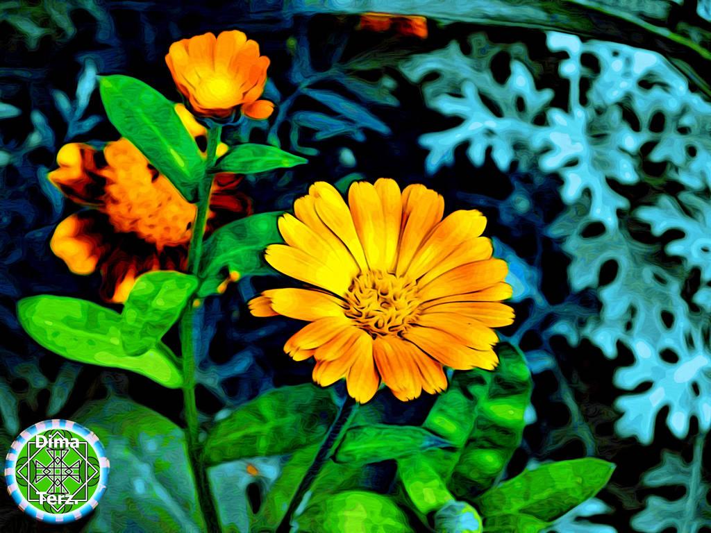 Alive Orange Flower it's Alive Green Sun by UAkimov09