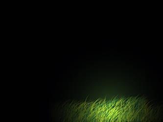 Night Grass by aenlma