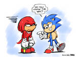 A Question, Knuckles..... by joaoppereiraus
