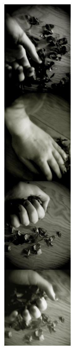 altercations of a forlorn love by ArianaDragonapollo