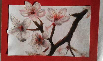cherryblooms by Tokessa