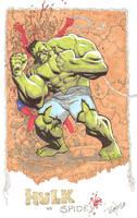 Hulk vs Spidey FIGHT by RyanOttley