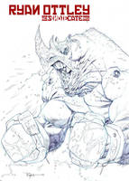 Rhino fighter by RyanOttley