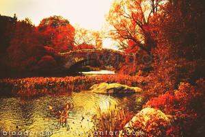 Central Park by TwiggyTeeluck