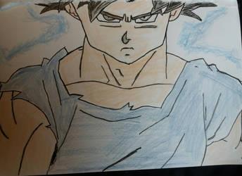 Goku ultra instinct by chile3456