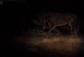 anthia by opaque-studios