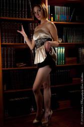Library Vixen by LouFCD