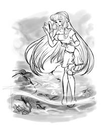 Sketch of the tide-pool by JMJGRANGER