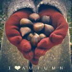 . . . I love autumn . . . by phoenixgraphixstudio
