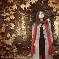 . . . f r a g m e n t s . . . by phoenixgraphixstudio