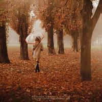 . . . n o v e m b e r h a z e . . . by phoenixgraphixstudio