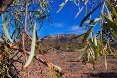 The Framed Flinders Ranges by destroyerofducks