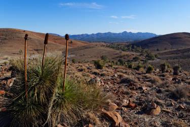 The Flinders Ranges #3 by destroyerofducks