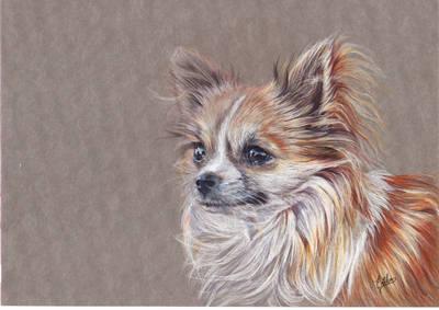 Portrait of a dog by Erikor