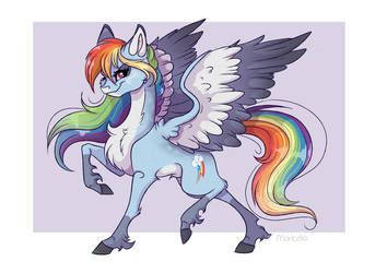 Rainbow Dash redesign by Marbola